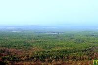 Bamni Dadar