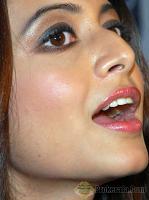 Bengali beauty Koel Mallick