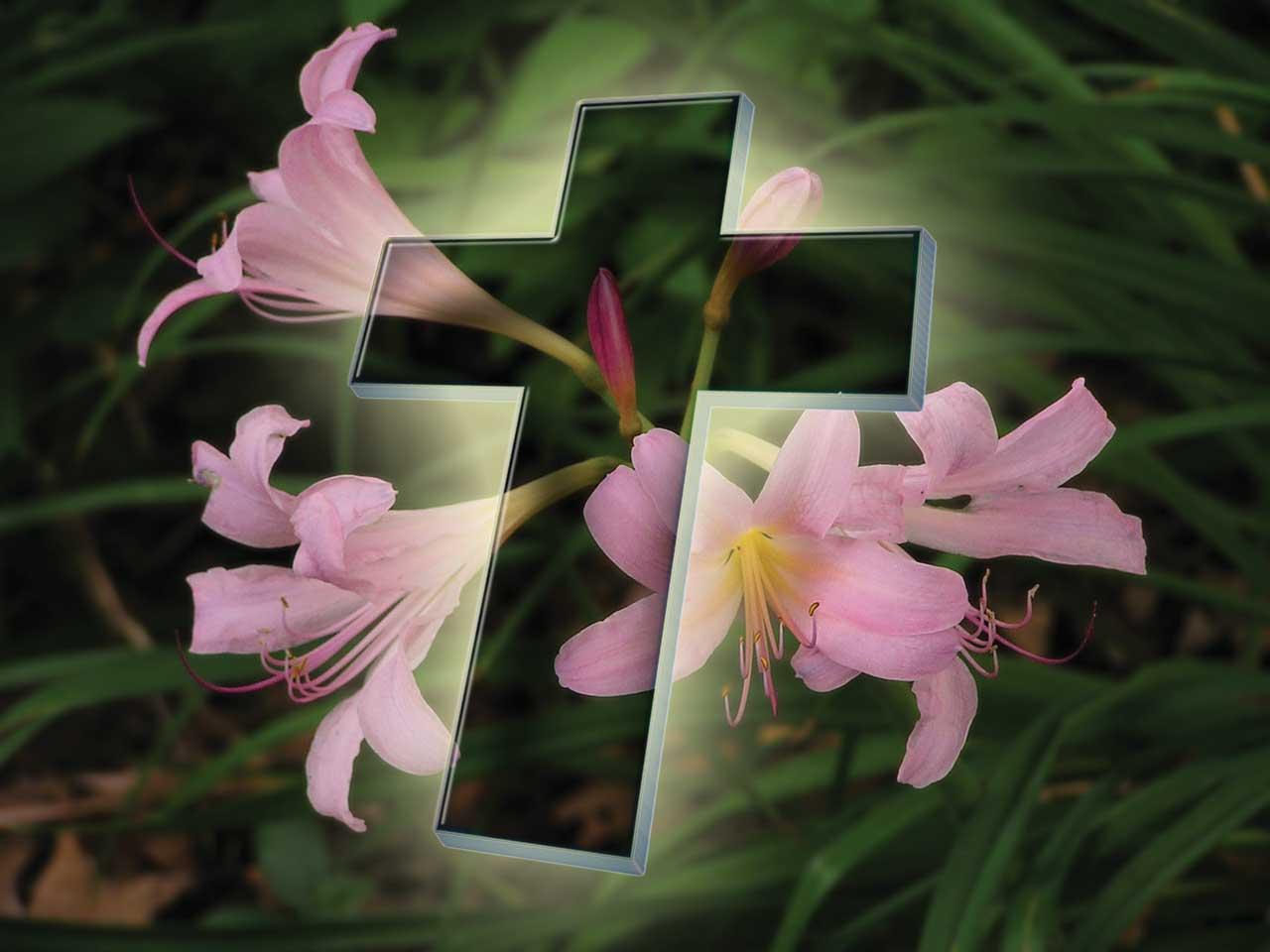 http://1.bp.blogspot.com/-yoMdfnffTjU/Ta4BmZhX7dI/AAAAAAAAAss/6DXWMNoPIL0/s1600/Easter-Desktop-Wallpapers-03.jpg