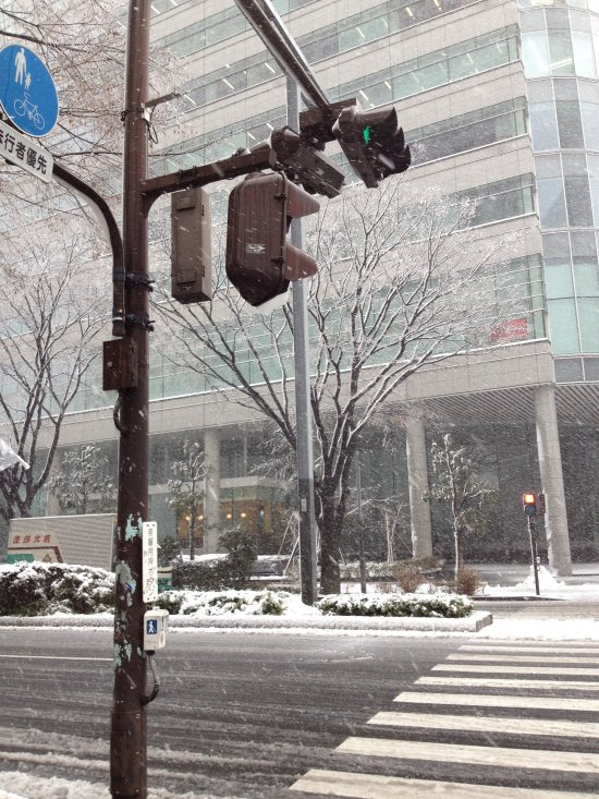 Shinjuku Snow