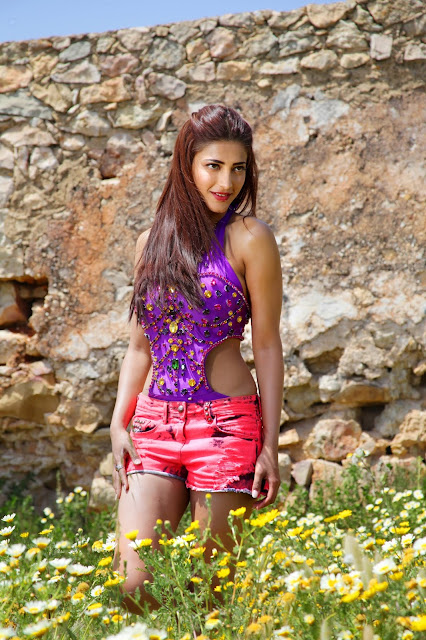 Shruti Haasan 2013 movie
