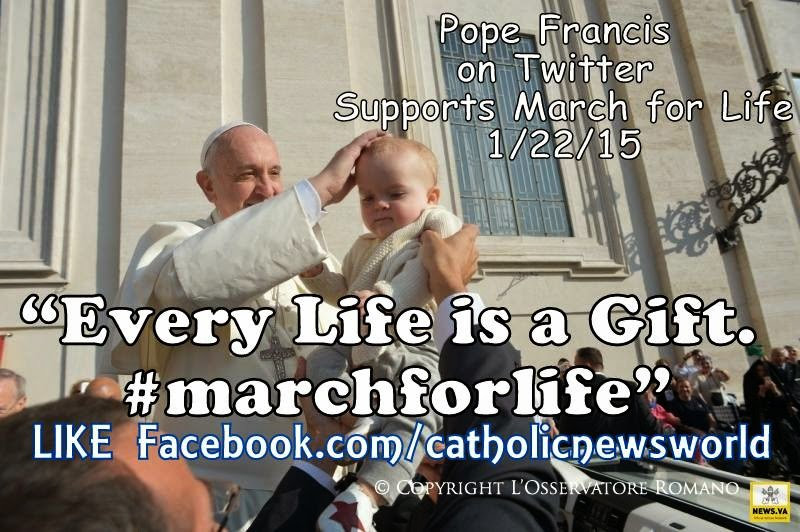 Pro Life Quotes Prepossessing Catholic News World  Top 10 Prolife Quotespope Francis To