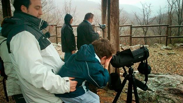 Día de las Aves en la Reserva Natural Garganta de los Infiernos