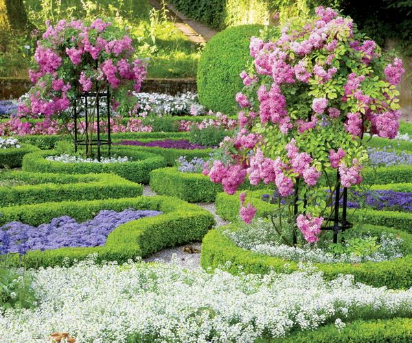 rosas no jardim de deus : rosas no jardim de deus:Depósito Santa Mariah: Jardim De Rosas, Faça Um!