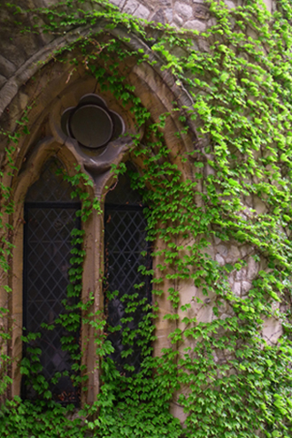 An ivy-covered tower window in the Tower of London.