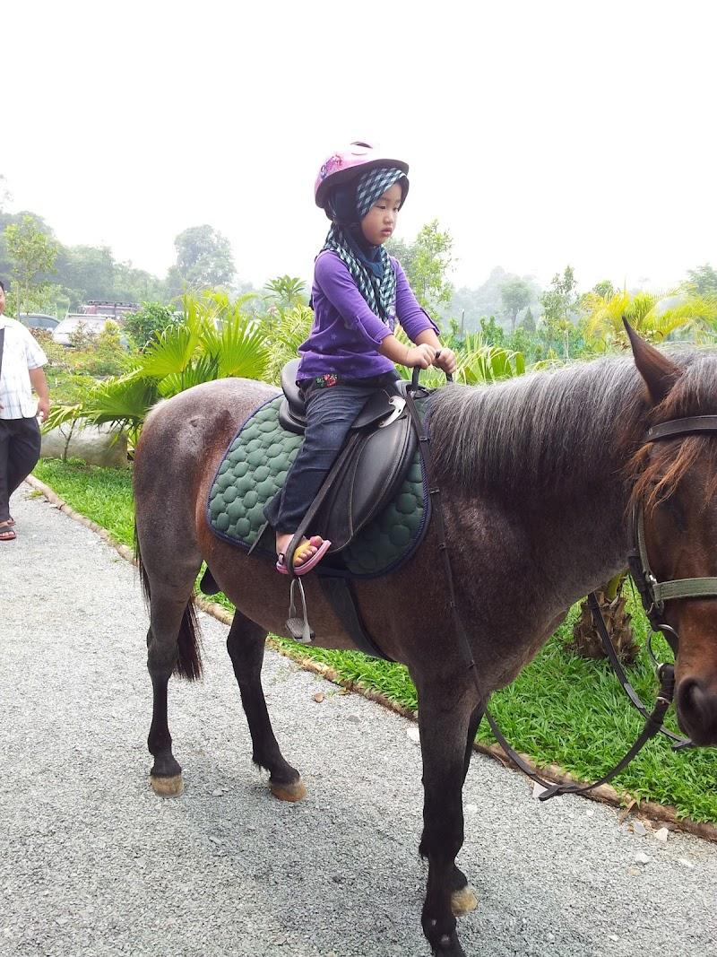 VH Green Nature Park, Matang Kuching Sarawak