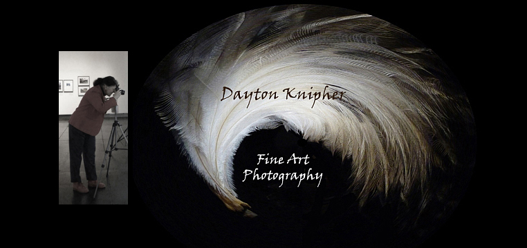 Dayton Knipher Fine Art Photography