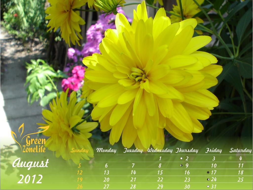 http://1.bp.blogspot.com/-ype2ro5ZwR0/UBjx0w8E22I/AAAAAAAAG1w/-EmXwFJ1x8U/s1600/august+green.jpg