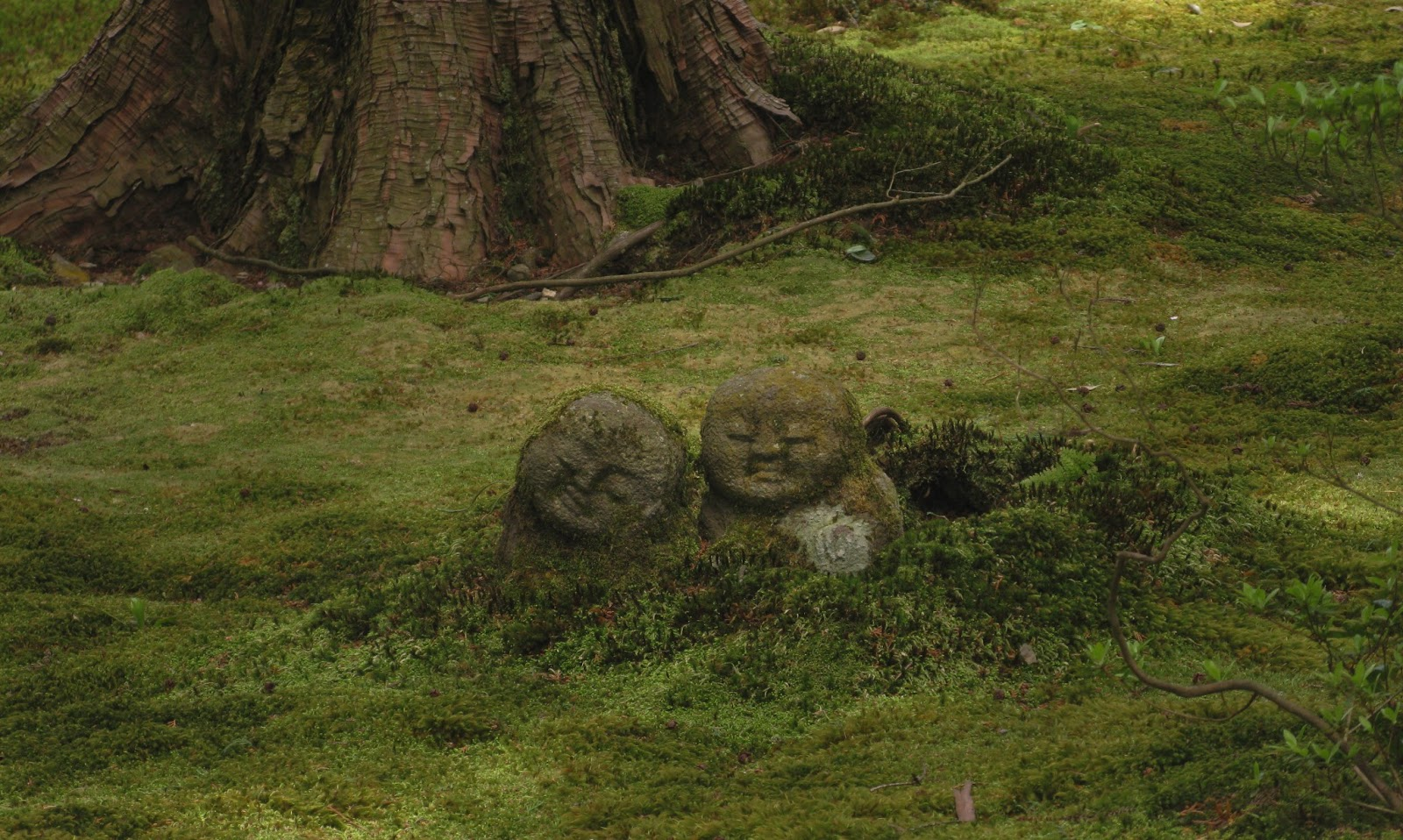 Trail life japan 9 unsere tempel und g rten in kyoto - Moosgarten kyoto ...