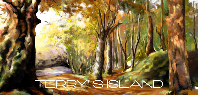 Terry's Island