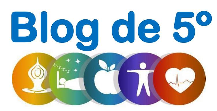 El blog de 5º