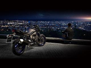 2013 Yamaha FZ8 Gambar Motor 5