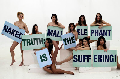 Actress are naked shooting for protected animals PSAs