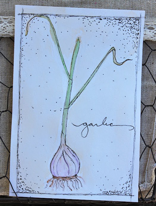 Garlic by Tori Beveridge 2014