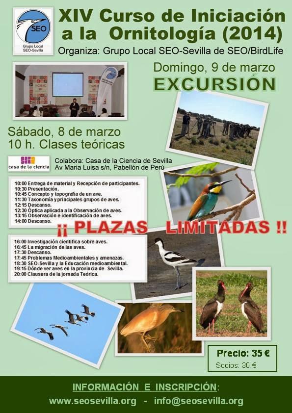 Ver y conocer las aves desde Sevilla. XIV Curso de iniciación a la Ornitología, Edición 2014. Grupo Local SEO-Sevilla de SEO/BirdLife.