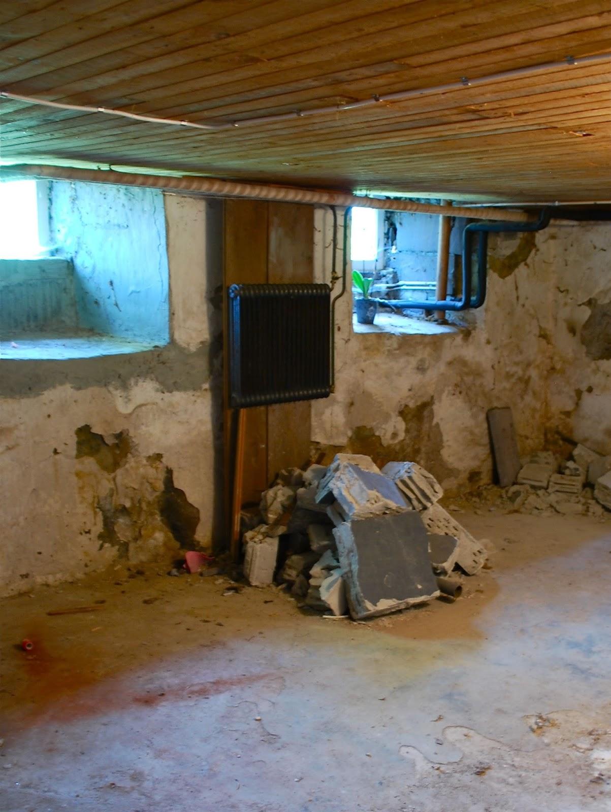 Fröken gröns blogg: då går jag ner i min källare