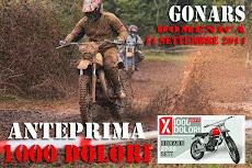 ANTEPRIMA 1000 D GONARS 14 SETTEMBRE 2014