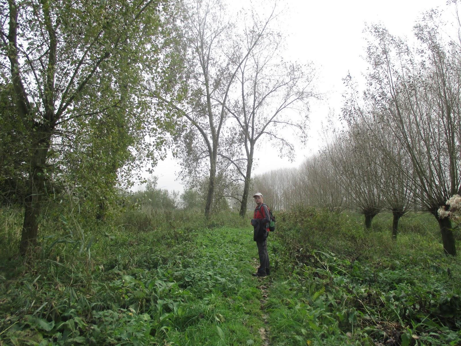 Landgoed Groot Eiland (Hulst)