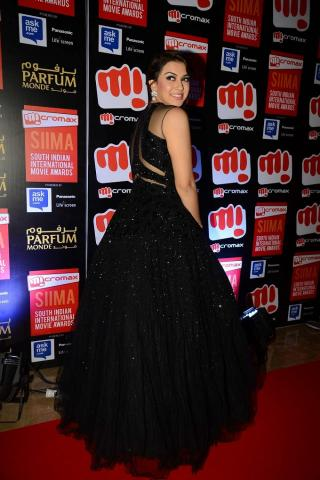 Stars Stunnings At The Red Carpet Of SIIMA -2015 In Dubai - South Indian International Movie Awards- Gallery