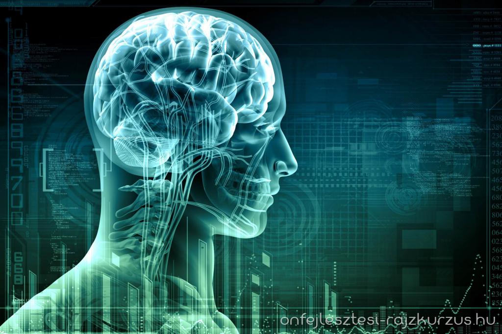 Döbbenetes felfedezés a huszadik századból: neuroplaszticitás