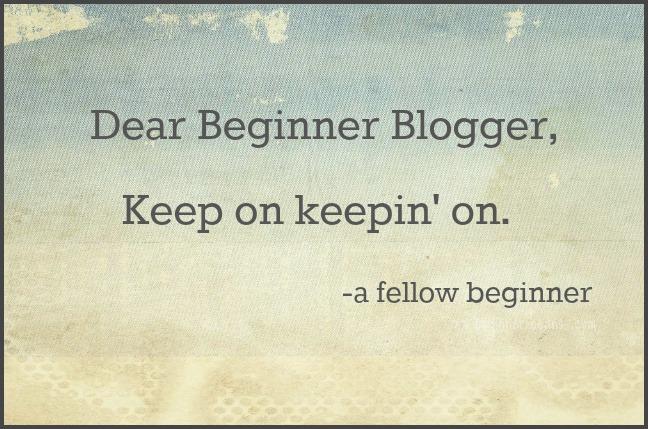 dear beginner blogger