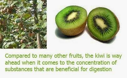 Kiwi fruit health benefits