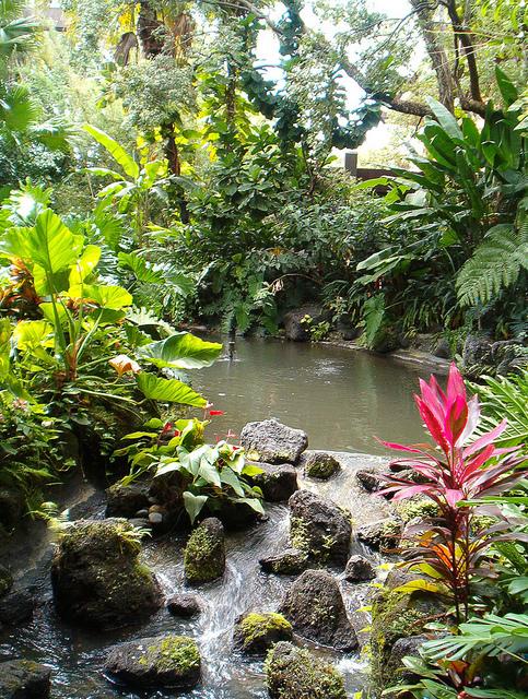 better homes and gardens water gardens pools streams fountains garten und landschaftsbau. Black Bedroom Furniture Sets. Home Design Ideas