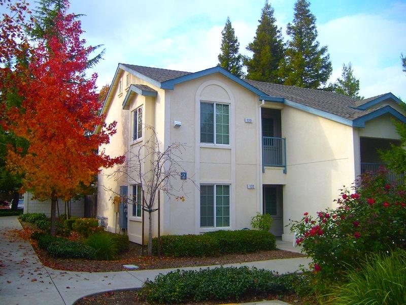 rose garden senior apartments - Rose Garden Apartments