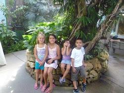 Dj,Kiara,Tiana &Adriana
