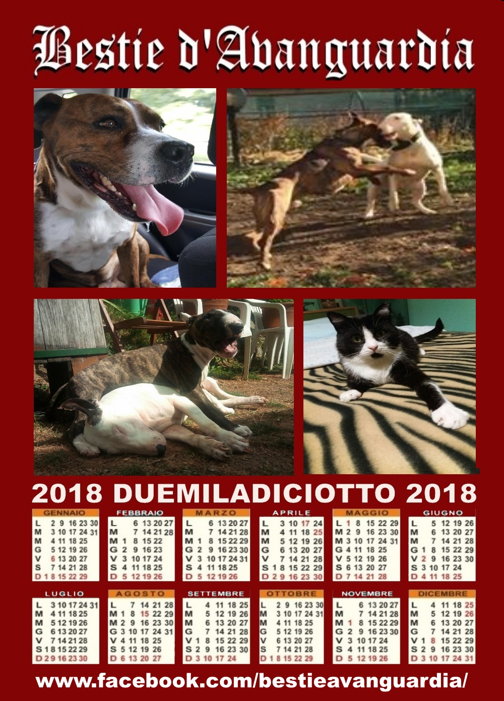 BUON 2018 DALLE BESTIE