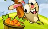 Tavşan Havuç Zıplatma Oyunu