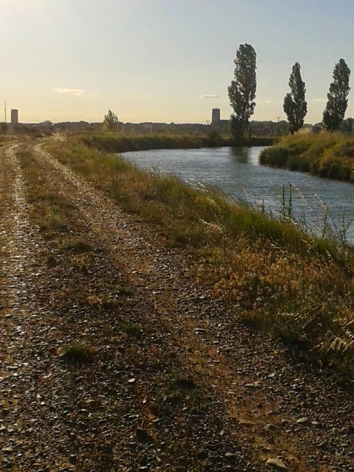 Desde la orilla del canal