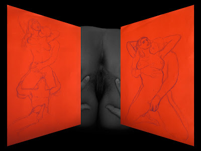dessin erotique pornographique