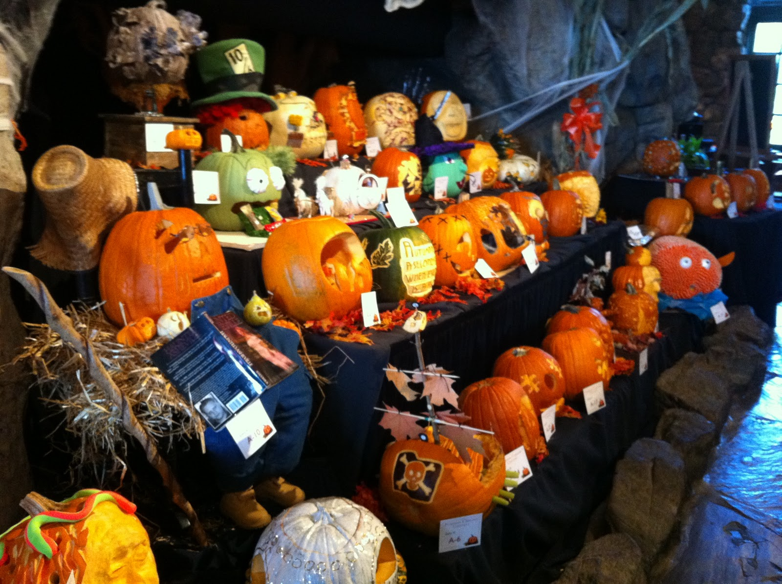 The asheville foodie pumpkin carving contest at grove