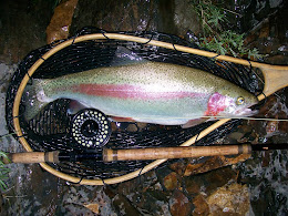 Two Handed Trout Rods ~ A Primer