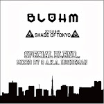 """BLOHM 2013 A & W """"SHADE OF TOKYO"""" Mixed  by Q  a.k.a. INSIDEMAN"""