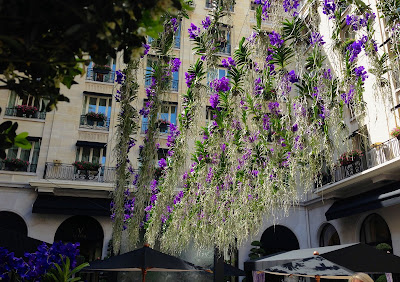orchids in Four Seasons courtyard  Paris