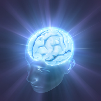 Zihnin İçinde – Into the Mind 24