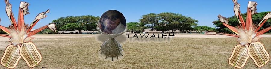 Comunidade Indígena Ipakup Ekatup Hap Satere Mawe