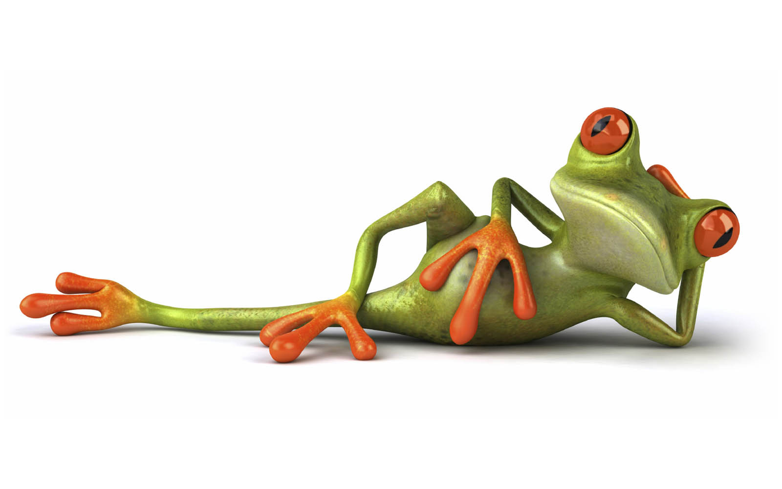 Tag Lazy Funny Frog Wallpaper Background Pao Image And Picture For Free