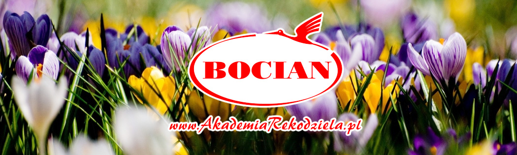 Akademia Rkodziea BOCIAN