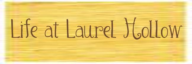 life at laurel hollow