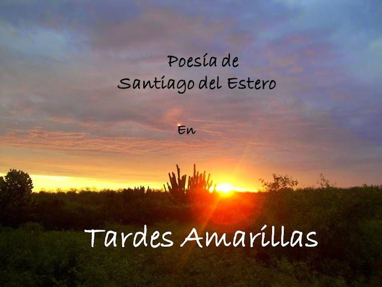 Poesía de Santiago del estero en TARDES AMARILLAS