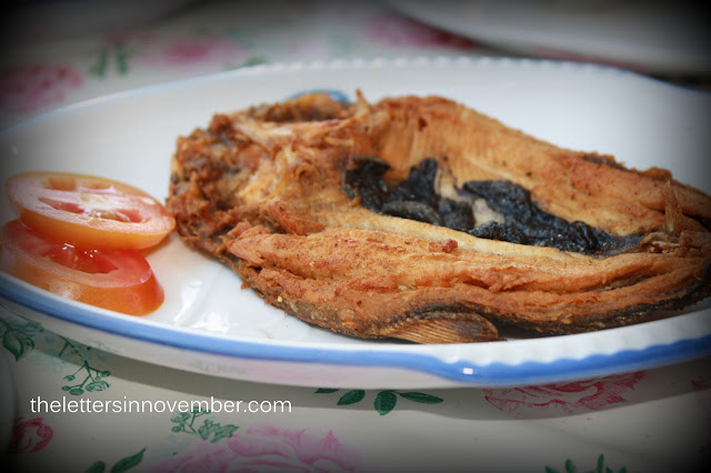 bangus or milk fish