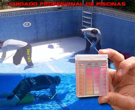 Servicios integrales a comunidades y empresas for Empresas mantenimiento piscinas