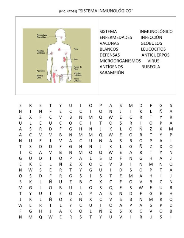 Sopa de letras sistema inmunológico