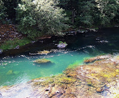 North Umpqua