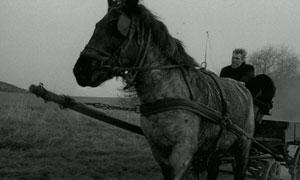 János Derski en The Turin Horse