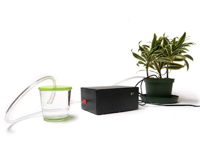 Making A Self-Watering Plant with Arduino