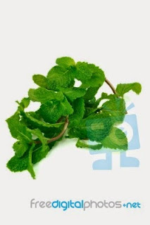 Peppermint-leaves-for-cure-cough